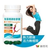【赫而司】海藻精碘軟膠囊(含褐藻素+碘+防彈MCT中鏈脂肪酸)(60顆/罐)