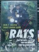 挖寶二手片-D81-正版DVD-電影【鼠禍3:圍攻巴黎】-克萊兒玻若查 賽瑞努維奇(直購價)