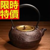 日本鐵壺-送禮品茗回甘水甘潤茶壺63f13【時尚巴黎】