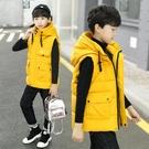 兒童裝男童馬甲2020新款秋冬裝棉馬夾中大童男孩洋氣坎肩加厚外套 小山好物