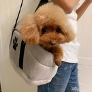 寵物秋冬外出包狗狗拎包加厚保暖貓咪袋子便攜式寵物出門拎包 黛尼時尚精品