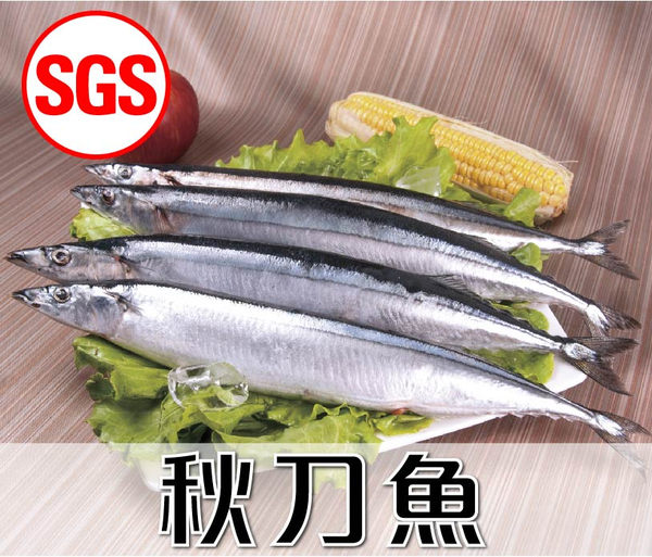SGS檢驗 秋刀魚1包(500g/包)