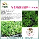 【綠藝家】大包裝00K15.洋當歸(圓葉當歸)種子7克(約1800顆)
