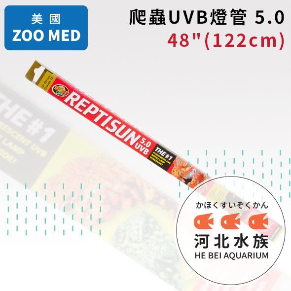 [ 河北水族 ] 美國 ZOO MED 【 爬蟲UVB燈管 5.0(48吋)(122cm) 】 補充陽光 T8燈管