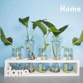 創意桌面綠蘿水培花瓶清新擺件客廳插花裝飾品植物透明玻璃容器 限時八折鉅惠 明天結束!