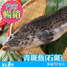 【台北魚市】 石斑魚(青斑) 550g±10%