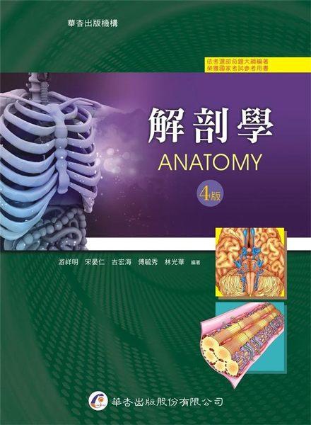 解剖學(4版)