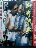 挖寶二手片-O01-067-正版DVD*華語【晚春情事】-陸小芬*馬景濤*文英