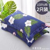 枕頭 一對裝】北極絨全棉枕套一對裝純棉枕頭套單人枕芯套48x74cm 米蘭街頭YDL