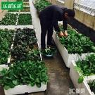 種植箱 陽台種菜盆種菜箱種植盆種菜花盆工具樓頂種菜種植箱特大號長方形 3C優購HM