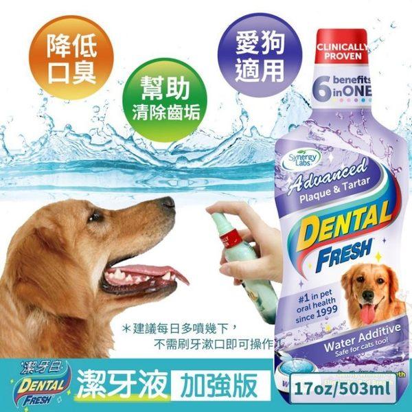 『寵喵樂旗艦店』美國Dental Fresh《犬用-潔牙液(加強版)》17oz