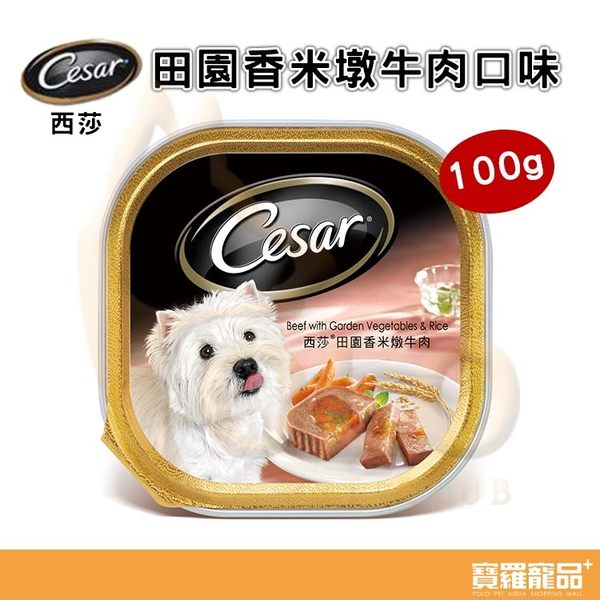 西莎cesar狗狗 田園香米墩牛肉口味餐盒 100g【寶羅寵品】