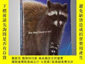 二手書博民逛書店Raccoons罕見on the Roof (Animal Ar