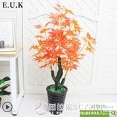 仿真植物盆栽鴻運當頭室內裝飾塑料假花防真花客廳擺件楓樹假盆景 圖拉斯3C百貨