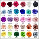 進口永生2-3CM玫瑰-乾燥花圈 乾燥花...