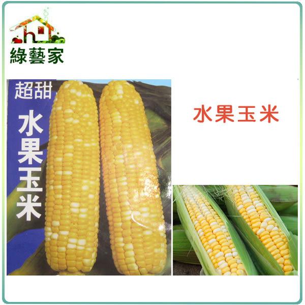 【綠藝家】大包裝G08.水果玉米 (黃白穗雙色玉米)種子60克(約350顆)
