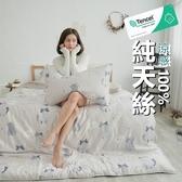 #TCL24#奧地利100%TENCEL涼感40支純天絲7尺雙人特大床包被套四件組(含枕套)