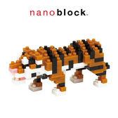 【日本KAWADA河田】Nanoblock迷你積木-孟加拉虎 NBC-104