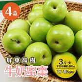 【南紡購物中心】屏東高樹牛奶蜜棗 3斤x4盒 小(約17-18顆/盒)