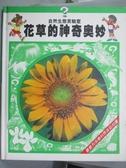【書寶二手書T5/少年童書_QDD】花草的神奇奧妙 (07830806)_李惠珠