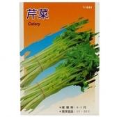 蔬菜種子-芹菜