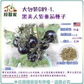 【綠藝家】大包裝G89-1.黑美人紫番茄種子0.5克(約220顆)