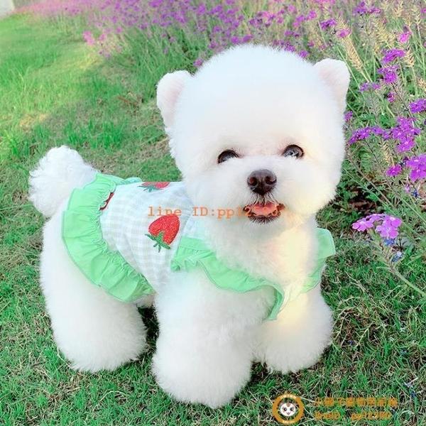 網紗草莓裙狗狗衣服夏季薄款寵物泰迪貓咪比熊博美衣服韓版小型犬小狗狗【小獅子】