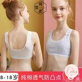 3件裝 女童內衣發育期防凸點學生純棉裹胸抹胸少女吊帶小背心薄【大碼百分百】