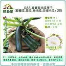 【綠藝家】G88.綠寶夏南瓜種子(綠櫛瓜...