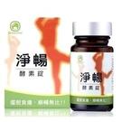 大漢酵素~淨暢酵素錠300毫克×90粒/瓶