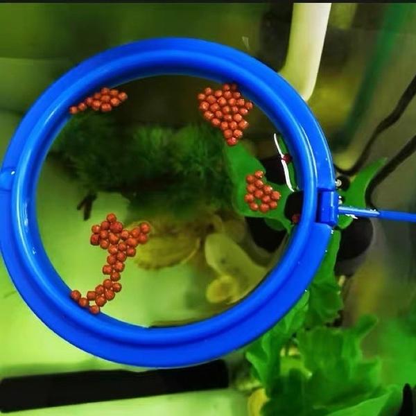 魚缸餵食器水族箱魚食投食器餵食圈飼料浮力投餵器(777-9247)
