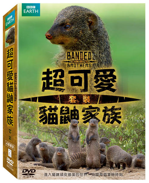 超可愛的貓鼬家族 套裝 DVD Banded Brothers:The Mongoose Mob Boxset 黑手黨伊莉莎白女皇國家公園