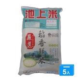 台東池上嚴選稻香鮮米2KGX5【愛買】