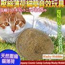 【培菓平價寵物網】美國CosmicCatnip宇宙貓 》100%全天然壓縮薄荷貓草音效玩具-搖擺蛋