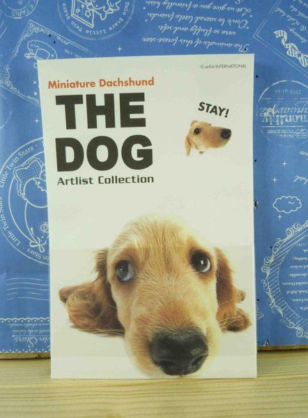【震撼精品百貨】新大頭狗_The Dog~信紙組-臘腸