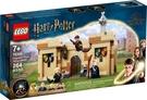 樂高LEGO Harry Potter 哈利波特 霍格華茲:首次的飛行課 76395 TOYeGO 玩具e哥