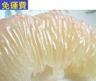 (已售完) 西施蜜柚 10月水果花蓮無毒農業老欉西施柚 約11斤(已售完)