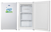 TECO 東元直立抽屜單門冷凍櫃 84公升 RL84SW 首豐家電