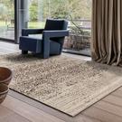 范登伯格 泰坦 比利時進口地毯-印象咖240x330cm