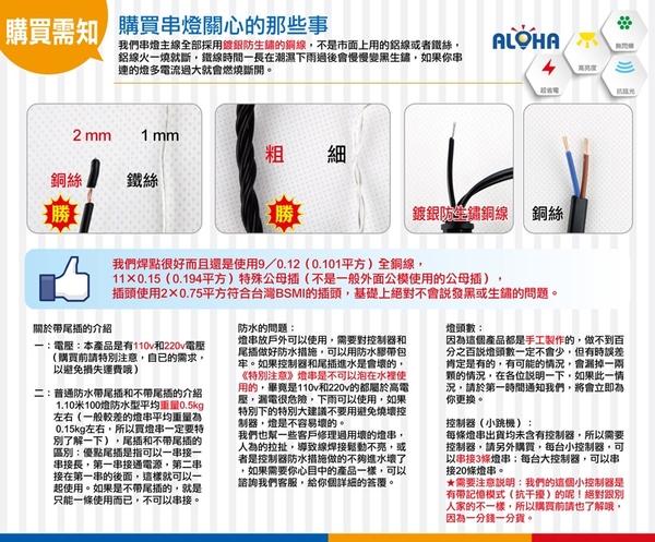 led聖誕佈置 垂吊聖誕燈 100燈LED不等長窗簾燈-白光-110V A-36-7