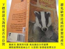 二手書博民逛書店badger罕見in the basement 地下室的獾Y200392