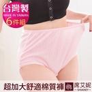 女性 MIT舒適 超加大棉質內褲 /35...