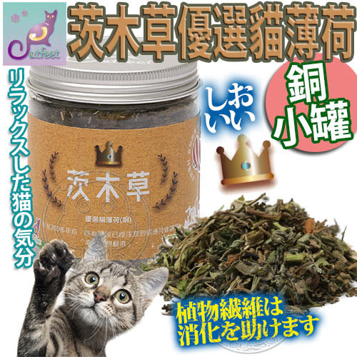 【培菓平價寵物網】CatFeet》茨木草優選貓薄荷貓草銅小罐-110ML