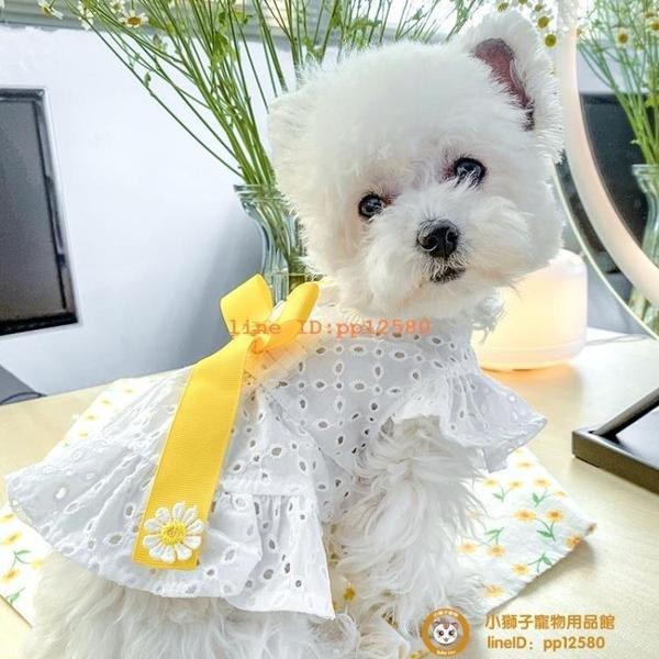 寵物泰迪比熊博美貴賓犬狗狗衣服夏季薄款公主連衣裙子小貓貓服飾小型犬小狗狗【小獅子】