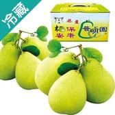 麻豆普明園文旦禮盒5台斤/盒【愛買冷藏】