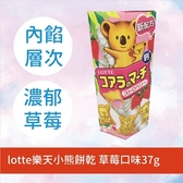 LOTTE樂天小熊餅乾 草莓口味 37g
