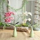 現代簡約仿真花擺件蝴蝶蘭花藝套裝客廳家居裝飾花絹花小盆栽擺件 LJ435【極致男人】