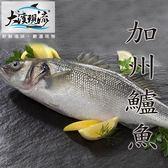 新鮮鮮嫩 加州鱸魚 / 大口黑鱸 2尾( 600g±10% _ 尾 ) 【大溪現流】