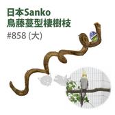[寵樂子]《日本Sanko》鳥藤蔓型棲樹枝#858(大)