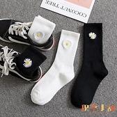 3雙裝 薄款雛菊襪子男女中筒襪純棉黑白色長襪【倪醬小舖】